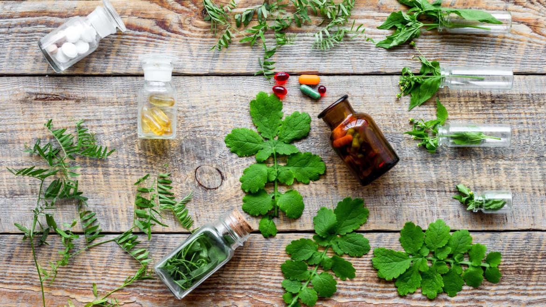 Ziołolecznictwo i fitoterapia